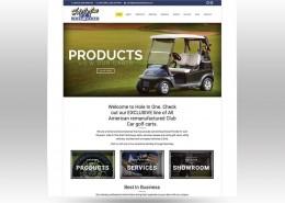 website development in Bonita Springs