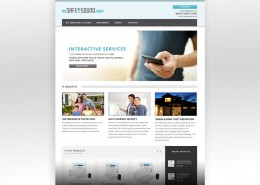 website desing company naples